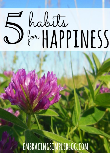 The key components of what makes happy people so happy, as well as different strategies for how to actually implement these habits for happiness into your own life. Click to learn these 5 habits for living a happier life at www.embracingsimpleblog.com.