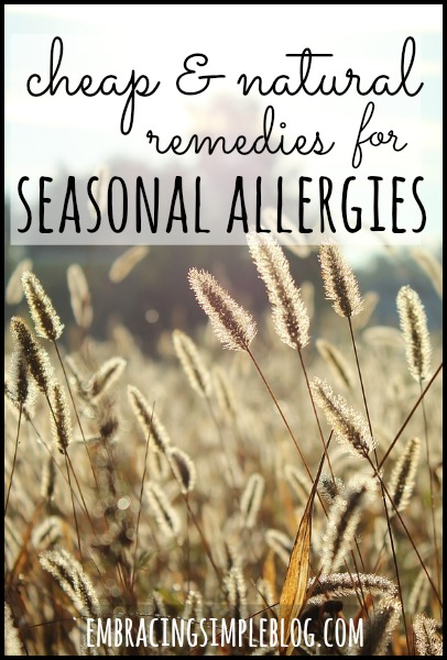 Suffering from seasonal allergies and looking for some remedies? Here are some Cheap and Natural Remedies for Seasonal Allergies that won't break the bank!